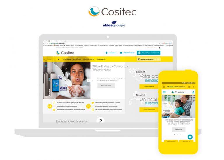 Cositec Wordpress design