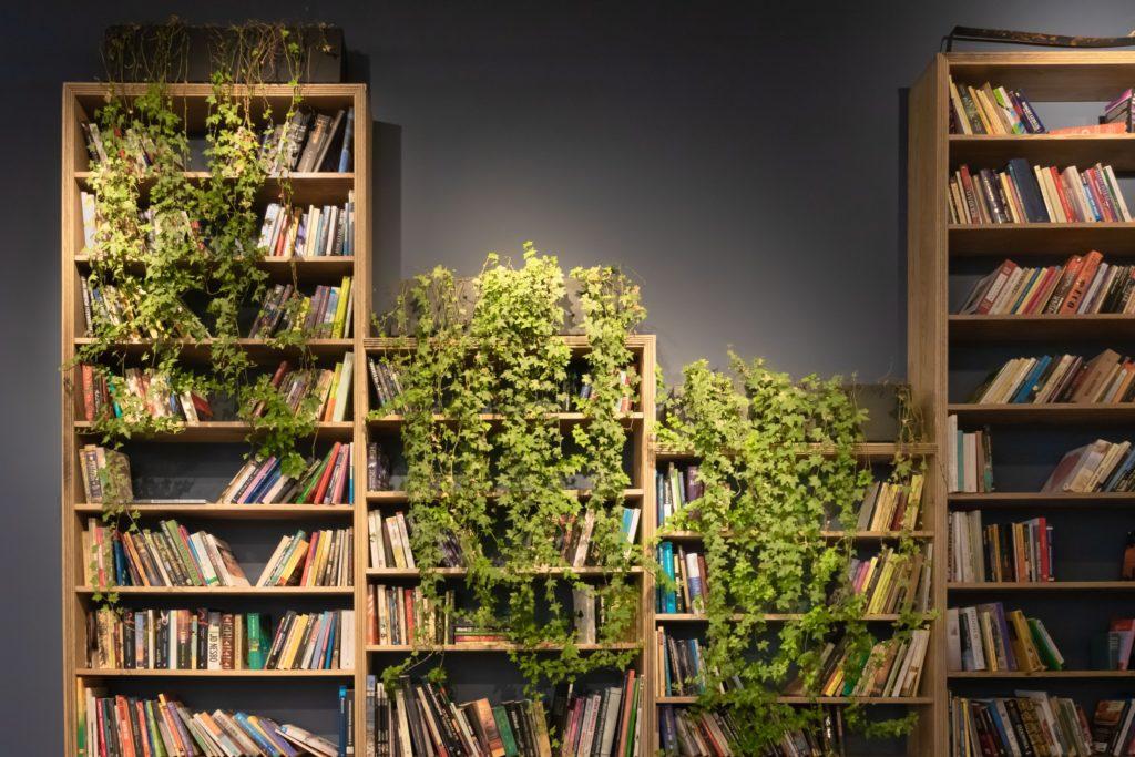 The idea of the Sutunam open library